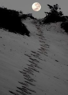 FuLL mOOn beaCH paTH ~* Mais