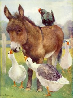 Donkey & friends, A. Farm Animals, Animals And Pets, Cute Animals, Wild Animals, Cute Donkey, Tier Fotos, Farm Yard, Horse Art, Animal Paintings