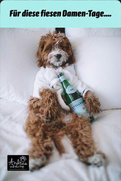 Dieses Öl hilft deinem Lieblingsmädchen von innen heraus durch die Läufigkeit. Vor allem bei #Scheinschwangerschaft. Es beinhaltet 200 Tropfen, eine Flasche reicht also um deine Hündin durch 2-4 Läufigkeiten bzw. Scheinschwangerschaften begleiten. Am besten mit unserem #andreandthedog LadyTee kombinieren. #hunde #hundeliebe #hundepflege #naturpur #chemiefrei #kraftdernatur #bioqualität #dogs #petcare #ohnekonservierungsstoffe #handmadewithlove #steiermark #besterfreunddesmenschen #läufigkeit Little Puppies, Cute Puppies, Cute Dogs, Silly Dogs, Funny Cats And Dogs, Funny Pets, Smiling Dogs, Cat Love, I Love Dogs