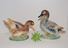 Vintage Closet, Vintage Butterfly, Display Case, Ducks, Mantle, Rockabilly, Awesome, Amazing, Tabletop