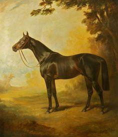 'Royal Realm', 1911, by James Lynwood Palmer (1867/8-1941)