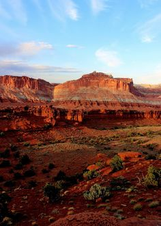 Four Corners Guy Photography - Sunset Point Vista  Capitol Reef National Park, Utah