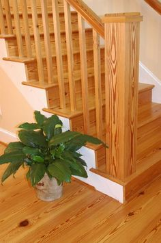 Pine Stair Treads And Risers   Google Search   For The Home   Pinterest    Stair Treads, Pine And Cabin