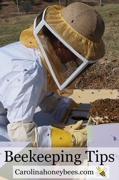 Beekeeping tips for the beginner beekeeper. Learn from locals in your area. Get off to a great start with honeybees Carolina Honeybees Farm