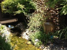 This stream flows under the house from the front to the back ponds. | Flickr - Photo Sharing!