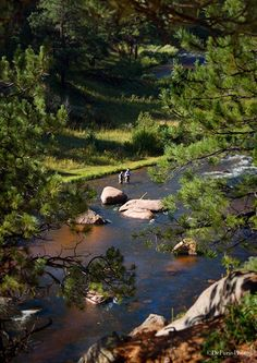 Oh I want to be here fly fishing!