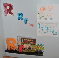 Memorizing the Moments: R for Rhino
