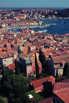 Next time, a visit to the port of Rovinj where Italian is prominently spoken due to its close proximity to the Italian border~