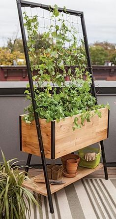 Elevated Planters  Great for balcony gardening