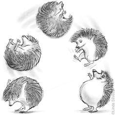 Coloring for adults-kleuren voor volwassenen Illustration Art Dessin, Hedgehog Illustration, Hedgehog Drawing, Hedgehog Art, Baby Hedgehog, Little Critter, Cute Creatures, Illustrators, Book Art