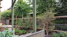 New fence taking shape.