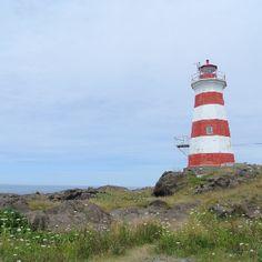 Western Light, Brier Island