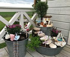 Miniträdgården för älvor har tre zinkkärl som stomme. Foto: Merja Erkstam