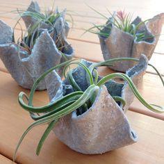 Mini Draped Fabric Planter Hypertufa Pot by GeometricGarden