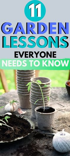 Each year, I learn something new when I'm gardening. Last year, I learned 11 garden lessons that revolutionized how I gardened and changed my harvest for the better. Here are those important gardening lessons you need to know too. Container Gardening Vegetables, Succulents In Containers, Planting Vegetables, Container Plants, Vegetable Gardening, Growing Vegetables, Container Flowers, Planting Bulbs, Planting Flowers