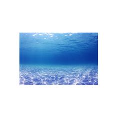 Underwater Background in the Sea Photographic Wall Art Print ($28) ❤ liked on Polyvore featuring home, home decor, wall art, ocean home decor, sea wall art, photography wall art, sea home decor and photographic wall art