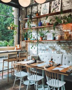 Botanical interior brick wall wood shelves modern lighting large windows lots of natural light