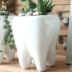 Ceramic Flower Pot, Cute Tooth Design, Color White