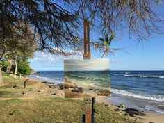 """Painting """"Afternoon at Puamana"""" by plein air painter of Hawaii artist Deb Lynch."""