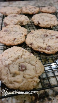 Easy Chocolate Chip Lactation Cookies - ConservaMom
