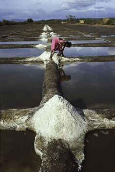 India, 1978 - Steve McCurry