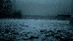 Rain Drop Wallpaper HD Natural Water 2560x1600px Resolution