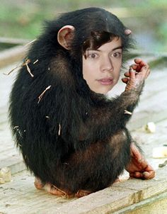 That Harry Styles sure is looking hot.