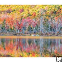 New Hampshire  ✨ Photographer  @markdphotos  #ScenesofNewEngland  Pic of the Day  11.06.15 ✨ C o n g r a t u l a t i o n s ✨ ---------------------------------------- #scenesofNH  #chathamNH  #igersnh #ignh #newhampshire  #newhampshire_potd  #basinpond  #newhampshire_explore #explorenh #hikenh #hikethewhites #visitnh #captures...