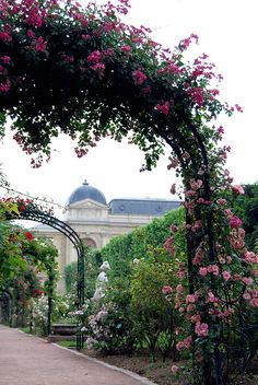La roseraie du Jardin des plantes - Paris   ---    hoops are the answer, so much interest added to one's garden ...