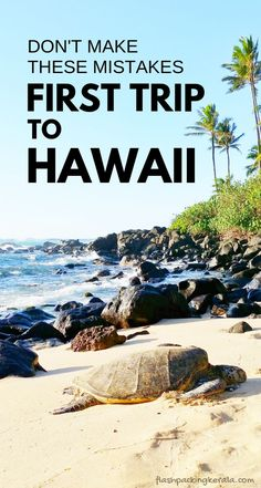 First trip to Hawaii in Things you shouldn& do Oahu . - First trip to Hawaii in Things you shouldn& do Oahu Maui Kauai Big Island Hawaii trave - Beach Vacation Tips, Hawaii Vacation, Hawaii Travel, Beach Trip, Travel Usa, Vacation Spots, European Vacation, Texas Travel, Vacation Resorts