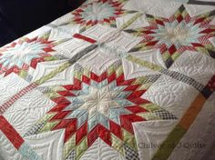 Beautiful work in this quilt. Especially the open spaces!