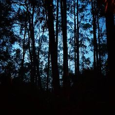 Noche linda! @sindamanoyhttps://www.instagram.com/p/BYCsuozAogo/