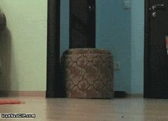 Let me move that for you - Click on picture twice to see gif.