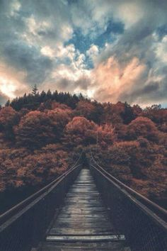 love photography life Cool beautiful hippie hipster vintage follow back indie Grunge dark clouds nature peace retro bohemian relax sunset bridge Woods
