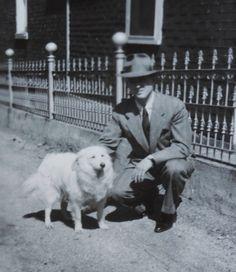 1946 photo Samoyed w Man w hat American Eskimo Spitz dog
