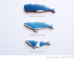 icingcookies#sugarcookies #アイシングクッキー#クジラ
