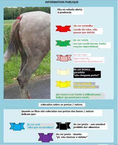 fitas_cavalos