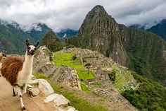 Machu Picchu: Full Day Tour by Train from Cusco - Aguas Calientes, Peru Cool Places To Visit, Places To Travel, Travel Destinations, Romantic Bucket List, Lac Titicaca, Beau Site, Inka, Vacation Places, Travel Tips