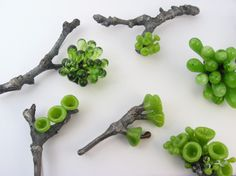 Kathryn Wardill - Branches - Brooches - silver and glass