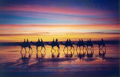 Broome Camel Safari - Cable Beach - Done Beautiful Places To Travel, Beautiful World, Next Holiday, Holiday Ideas, Campervan Hire, Outdoor Cinema, Scenic Photography, Travel Memories, Western Australia