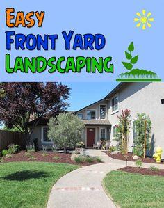 Low maintenance front yard