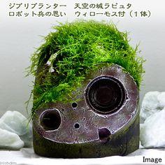 (水草)ジブリプランター 天空の城ラピュタ ロボット兵の思い ウィローモス付(無農薬)(1体) 北海道航空便要保温