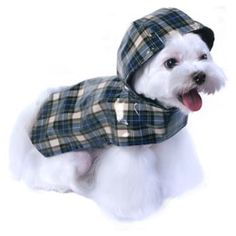 Levi Raincoat for Dogs.....available at http://doggyinwonderland.com/item_2110/Levi-Raincoat-for-Dogs.htm