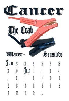 Australian take on Astrological signs #astrology #astrological #signs #zodiac #cancer #australian #australia