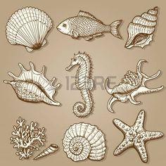 Deniz koleksiyonu Orijinal elle çizim çizilmiş
