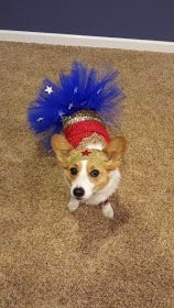 The Daily Corgi: More #Corgis in Costumes: Halloween Week Rolls On!