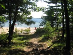 Trail from site to beach