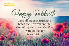 Psalms is the book of the Bible and can be found in the Old Testament. Here are some Scripture pictures from the book of Psalms that you will prayerfully be blessed by. Happy Sabbath Images, Happy Sabbath Quotes, Sabbath Rest, Sabbath Day, Bon Sabbat, Psalm 25 5, Shabbat Shalom Images, Saturday Greetings, Be Of Good Courage