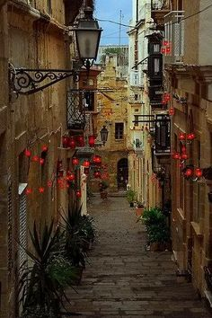 "oldest of the Three Cities, Birgu is a wonderful place to wander and has a few significant sites around which to plan a visit."" Malta and Gozo: the Bradt Guide Beautiful Places To Visit, Wonderful Places, Places To Travel, Places To See, Malta Gozo, Malta Island, Beautiful Islands, Belle Photo, Scenery"