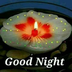We send good night images to our friends before sleeping at night. If you are also searching for Good Night Images and Good Night Quotes. Good Night Love Quotes, Beautiful Good Night Images, Good Night Prayer, Good Night Blessings, Good Night Messages, Night Quotes, Beautiful Morning, Morning Quotes, Good Night Honey